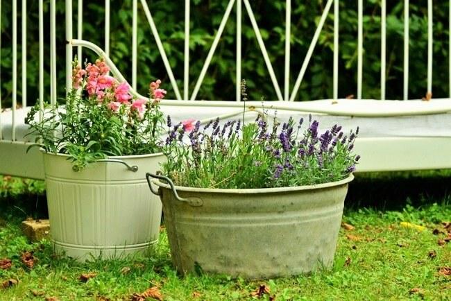 Beautiful Flower Garden Design-6