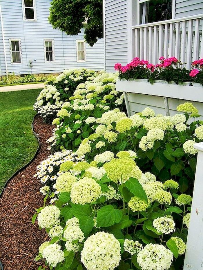 Colorful-Front-Yard-shade-garden-Ideas (12)