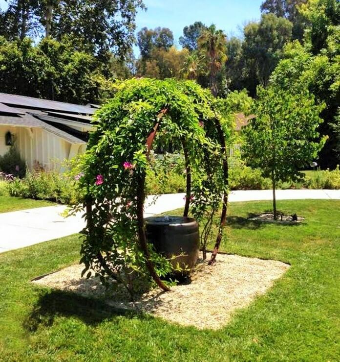 Colorful-Front-Yard-shade-garden-Ideas (4)