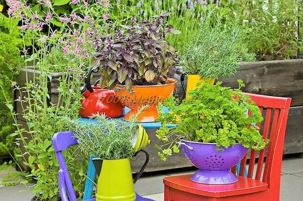 DIY-Colander-Planters-Ideas (2)