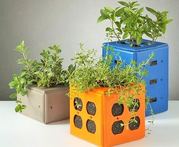 DIY-Desktop-Planters-Made-from-Old-Switch-Plate-Covers (2)