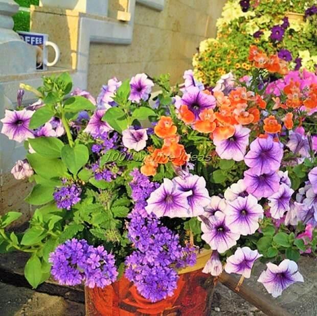 DIY-Planter-Ideas (10)