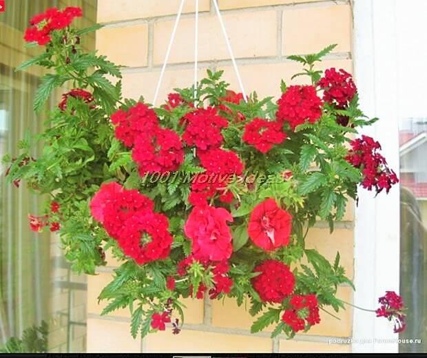 DIY-Planter-Ideas (6)