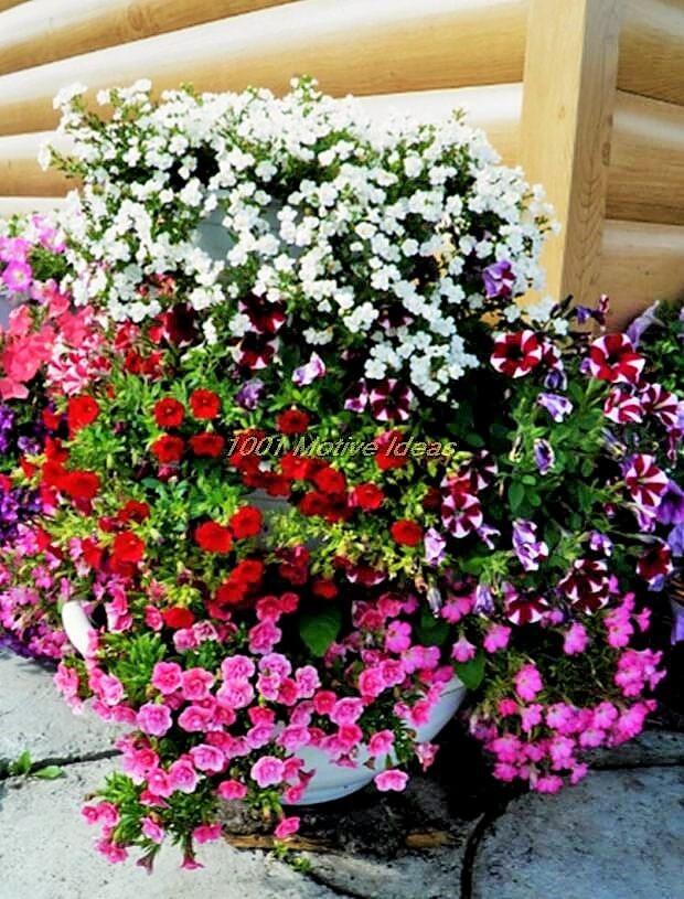 DIY-Planter-Ideas (7)