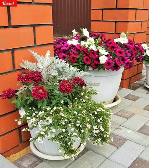 DIY-Planter-Ideas (8)