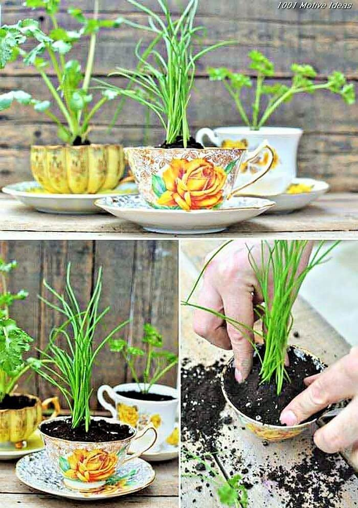 Easy-and-cheap-diy-garden-Homemade-Projects-104 (2)