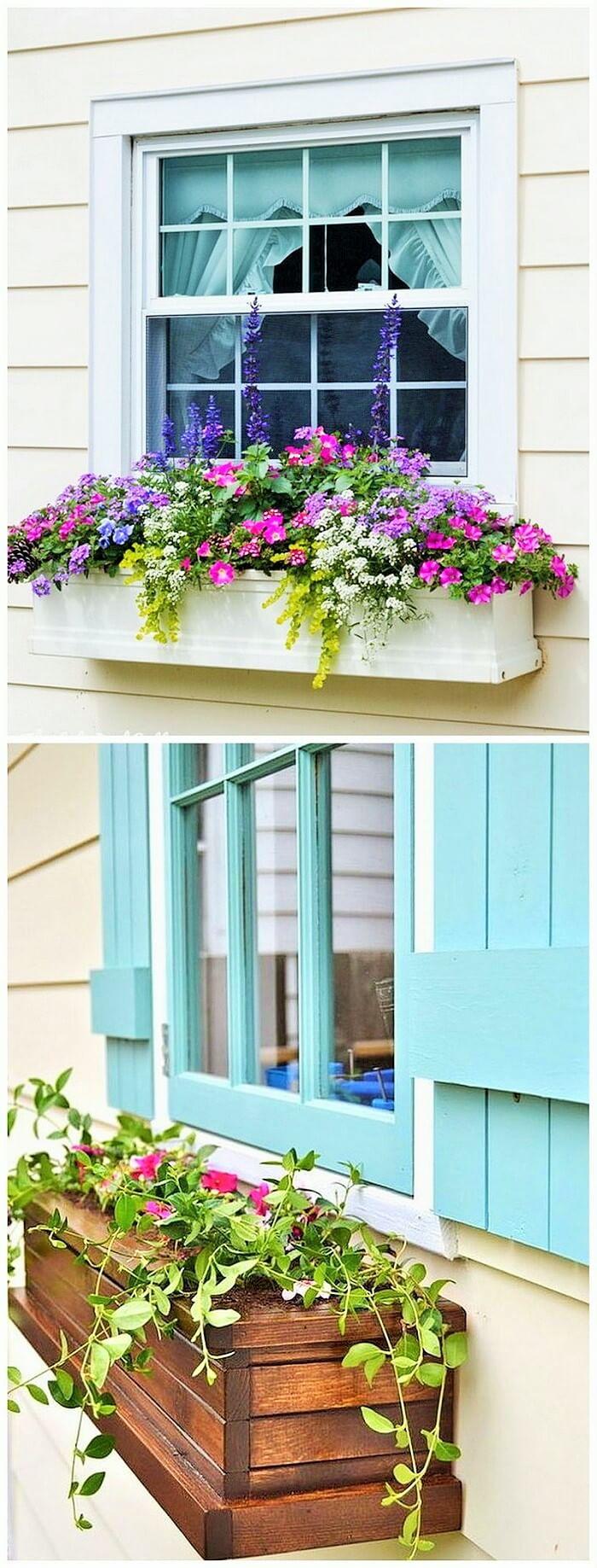 Window Decoration Ideas (8)
