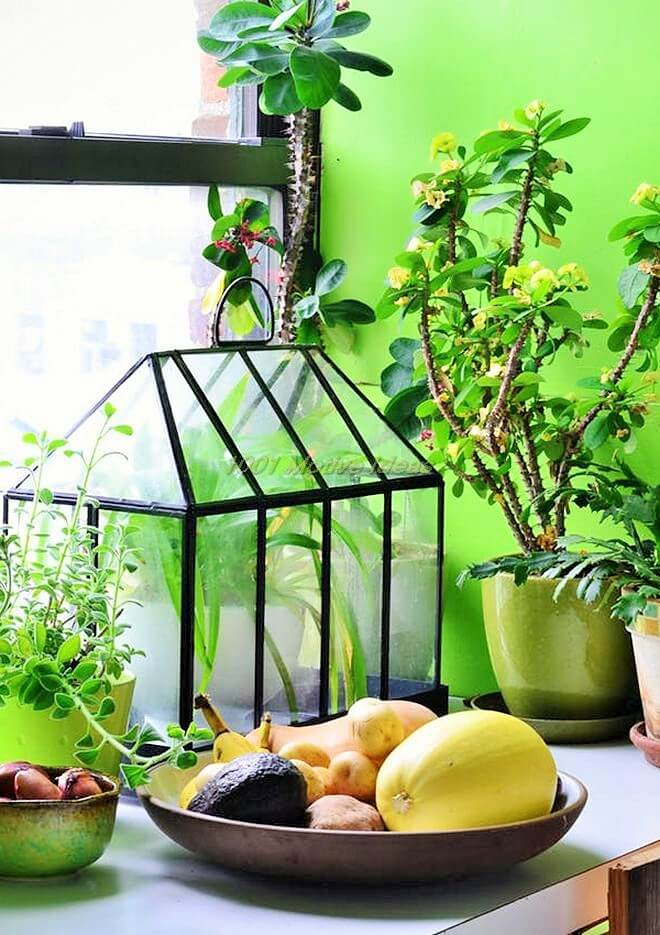 DIY-Small space indoor-garden-ideas-1 (3)