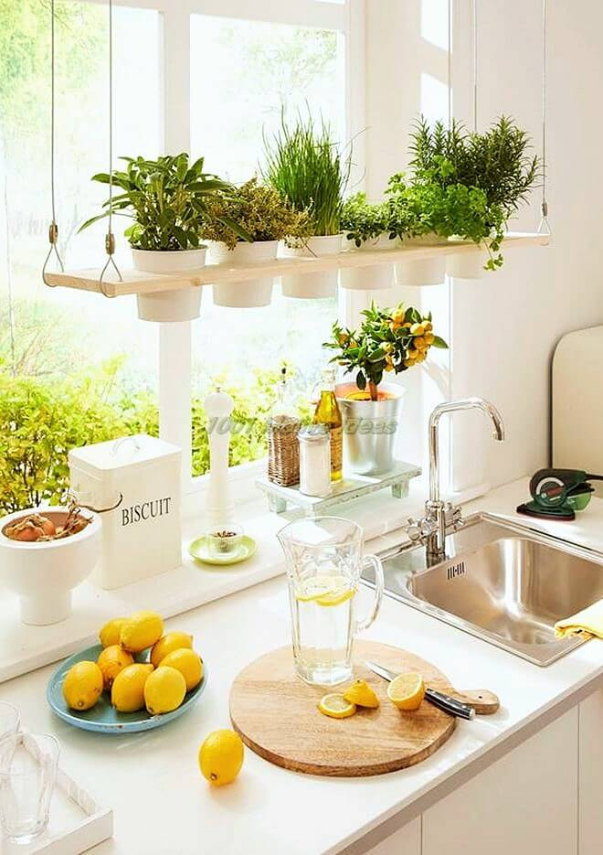 DIY-Small space-indoor-garden-ideas-10 (2)