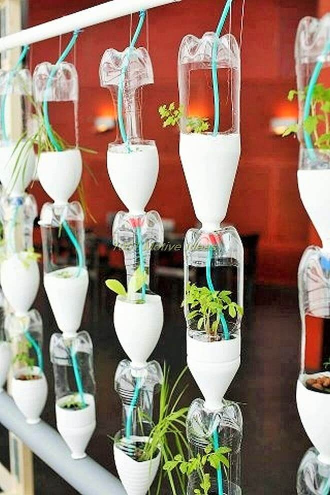 DIY-Small space- indoor-garden-ideas-13 (2)