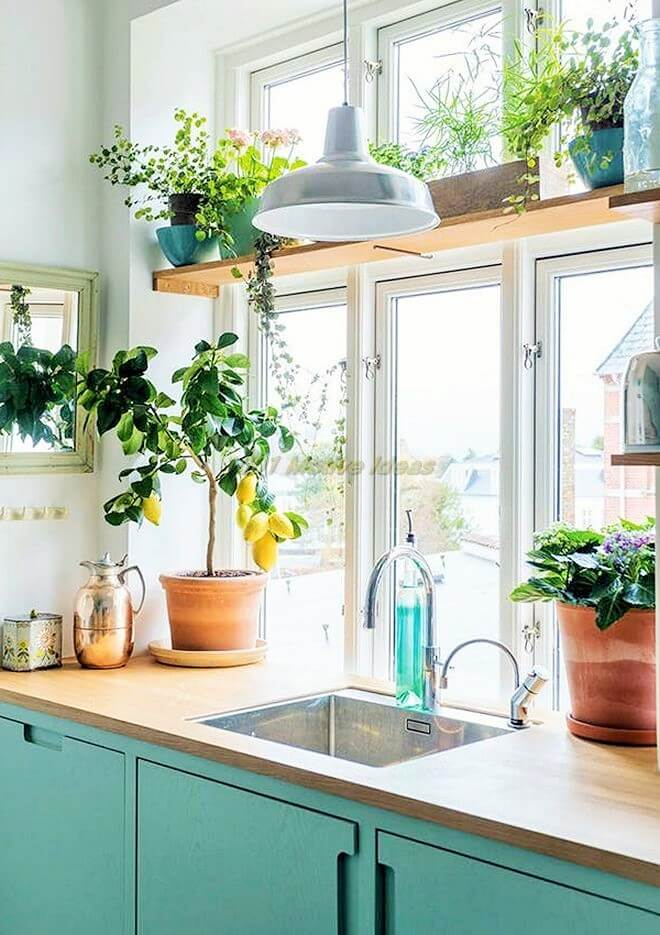 DIY-Small space- indoor-garden-ideas-6 (2)