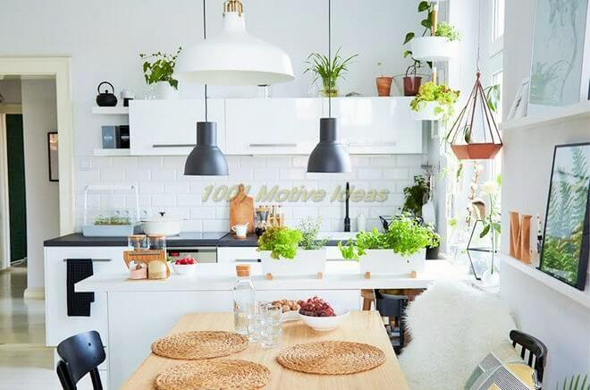 DIY-Small space- indoor-garden-ideas-8 (2)