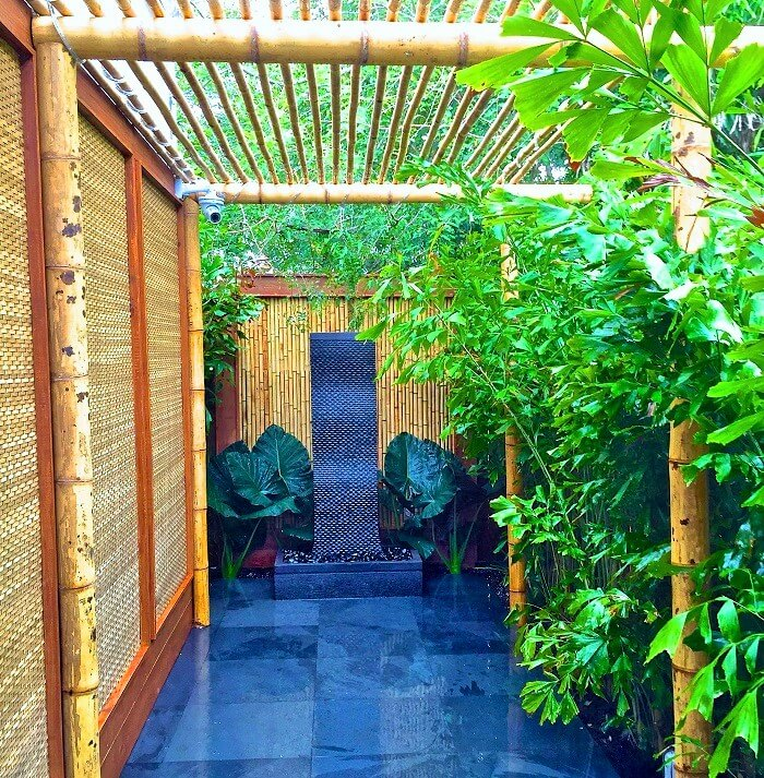 The Decor home-with -samal shade plants. (11)