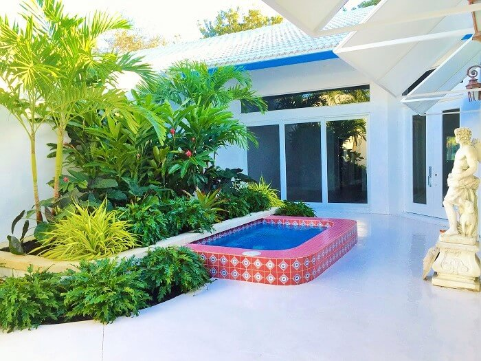 The Decor home-with -samal shade plants. (8)