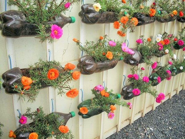 Garden-Diy-beauty-shot-with-old-botal-Ideas