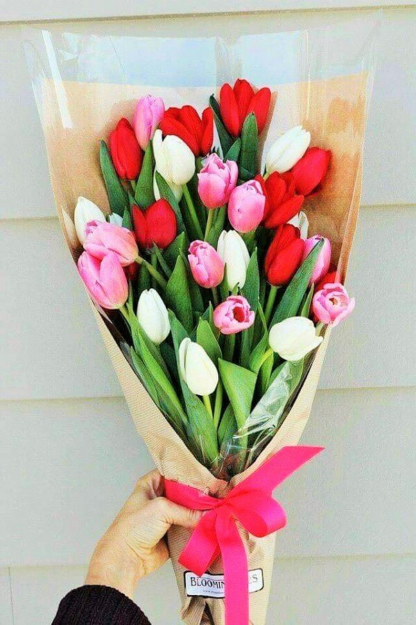 Popular-valentines-day-flowers-tulips-Ideas-2