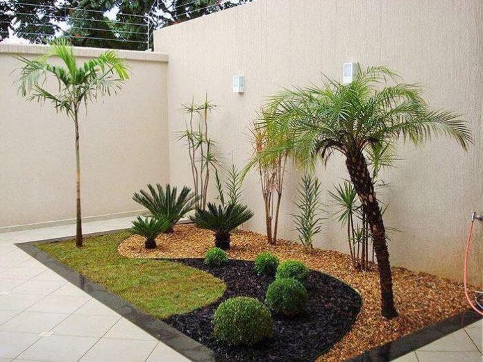 small garden in small home