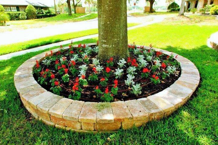 Small-tree-round-garden-Project-02