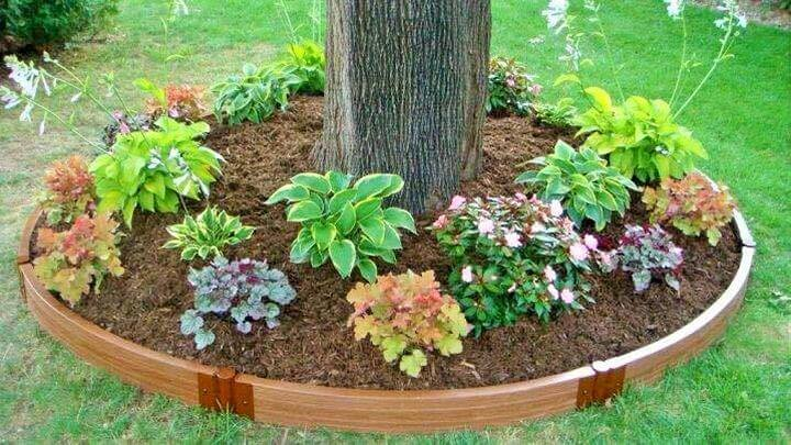 Small-tree-round-garden-Project-03