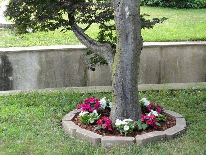 Small-tree-round-garden-Project-05