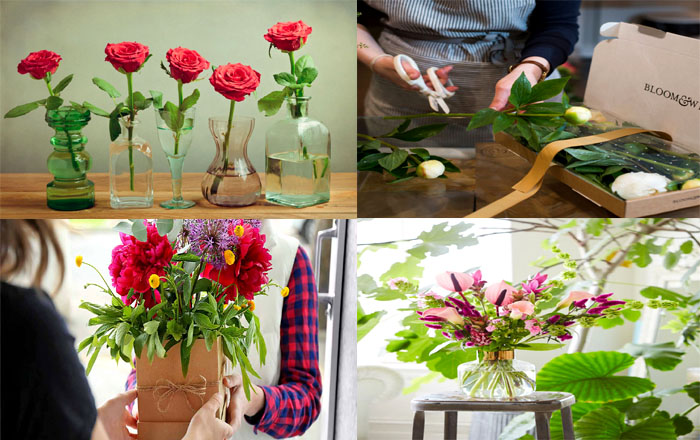 How To Keep Your Flowers Fresh In The Heatwave - 1001 Motive Ideas