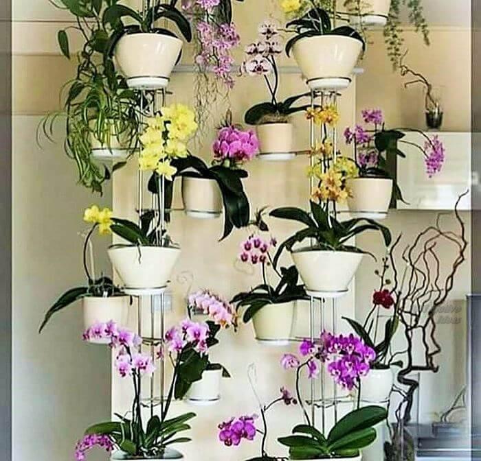 Small Garden Designs Ideas- (5)