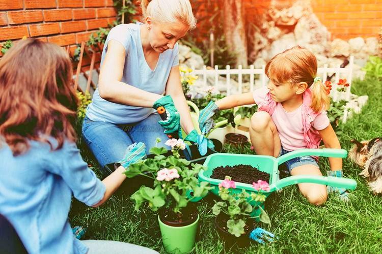Simple Small Garden Ideas- (1)