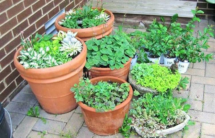 Simple Small Garden Ideas- (13)