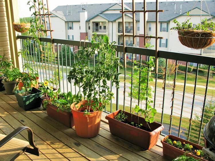 Simple Small Garden Ideas- (5)